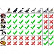 Визуальный отпугиватель птиц ХИЩНИК
