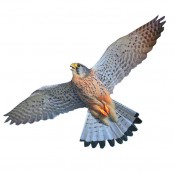 Визуальный отпугиватель птиц ХИЩНИК 3