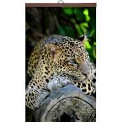 Гибкий настенный обогреватель Леопард